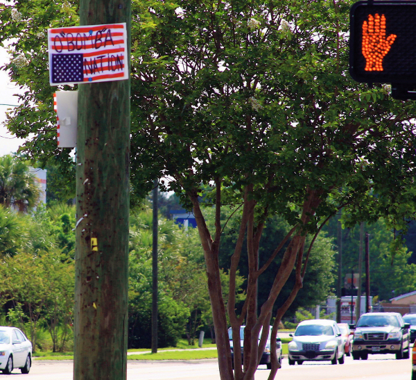 "O""bomb""a Nation. Signs & banners seen in the Tampa Bay area Memorial Day 2009"